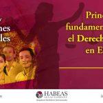 Principios fundamentales sobre el Derecho Laboral en España